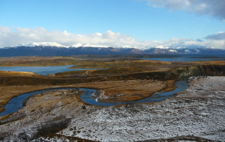 Lenga Patagonia
