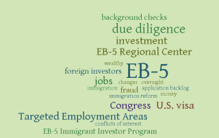 EB-5 word cloud