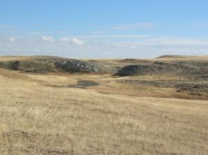 Spring Creek Preserve